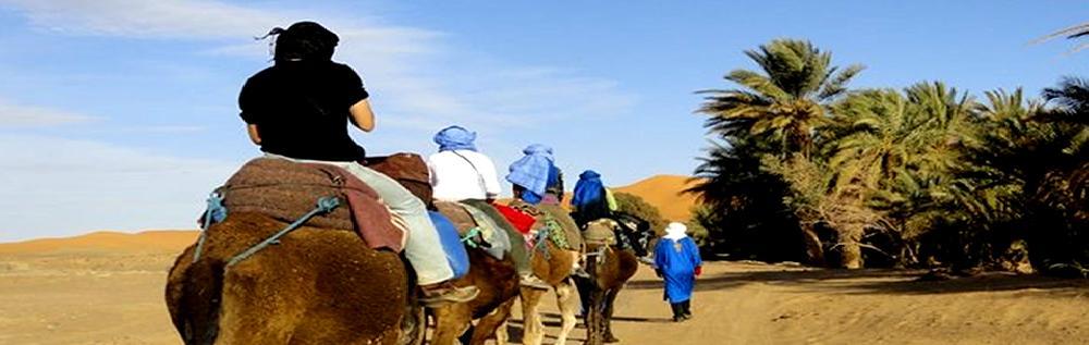 images/desert_tours/260_53.jpg