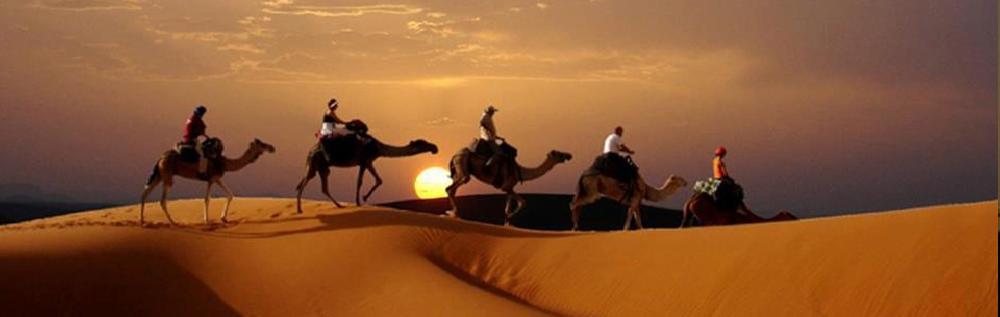 images/desert_tours/263_51.jpg