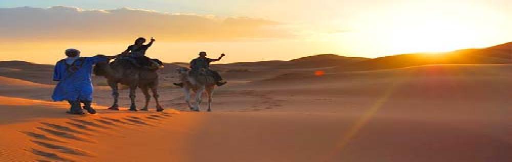images/desert_tours/264_47.jpg
