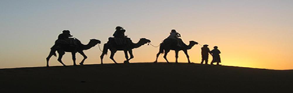 images/desert_tours/270_48.jpg