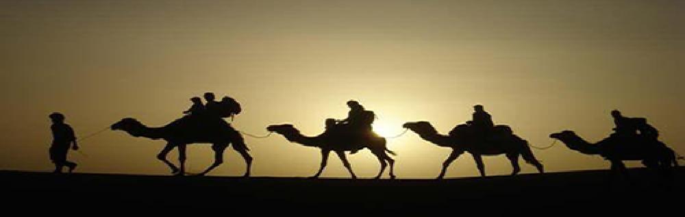 images/desert_tours/276_49.jpg