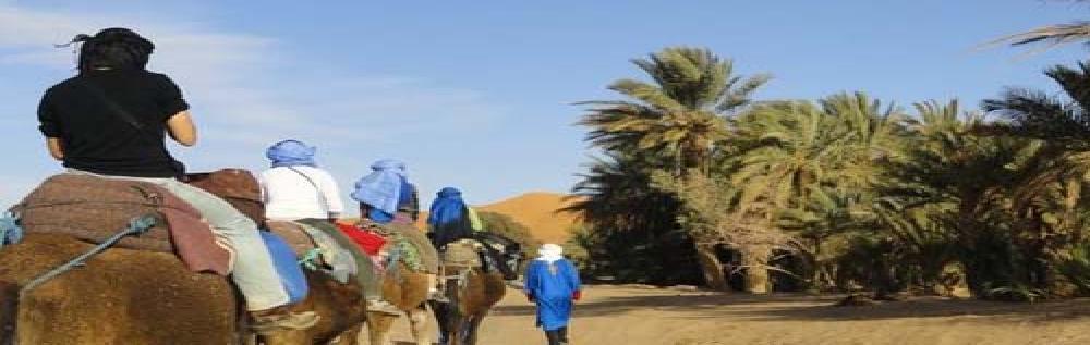 images/desert_tours/282_50.jpg